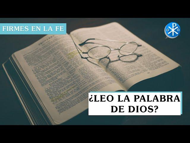 ¿Leo la Palabra de Dios? | Firmes en la fe - P Gabriel Zapata