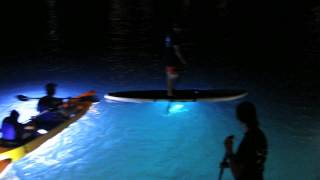 Night Kayaking in St. Thomas, U.S. Virgin Islands
