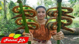 Yummy cooking Eel recipe Village Food Factory | Natural Life