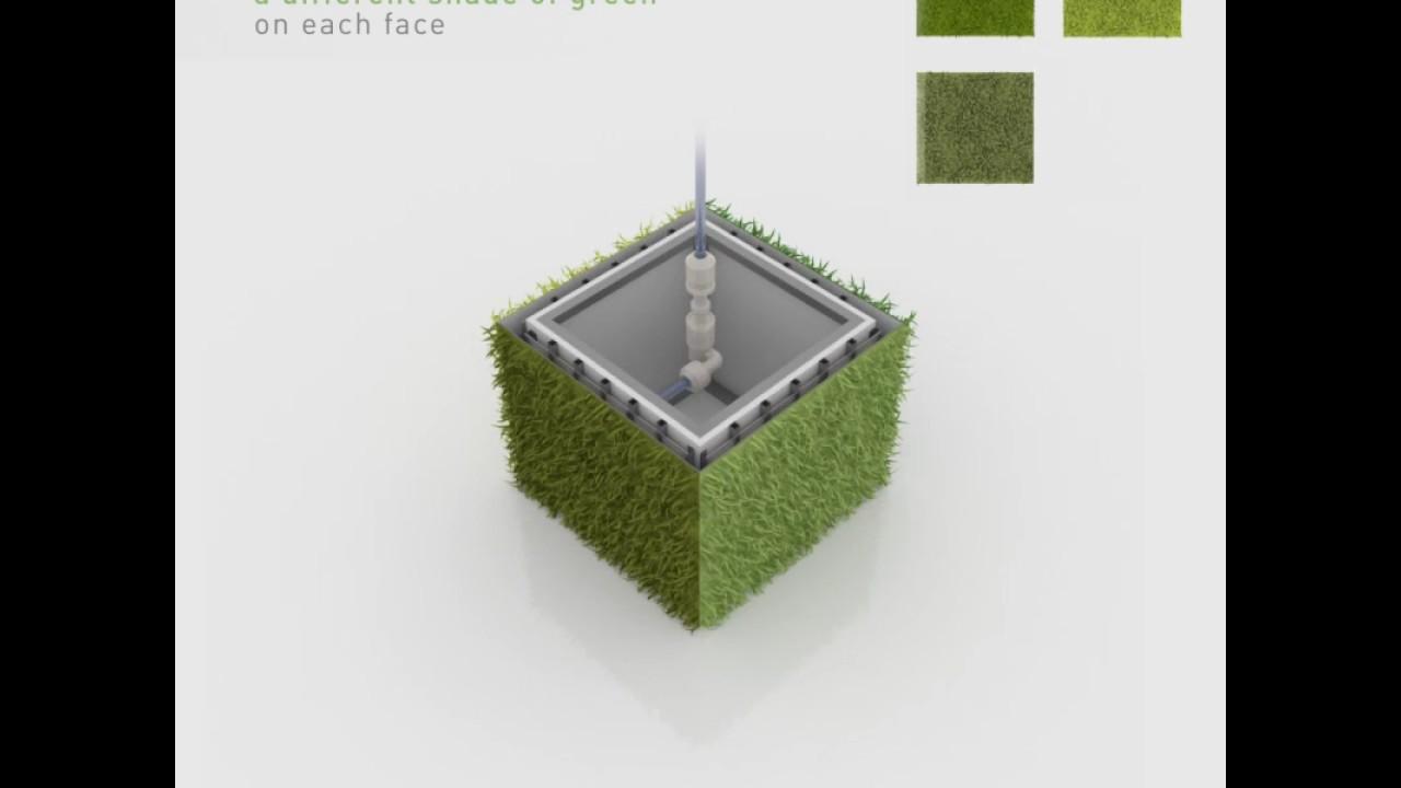Kinetic Green Canvas / Associative Data Research x Green Studios