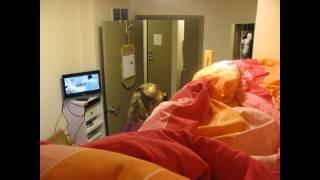 Rae'e Dorm Room
