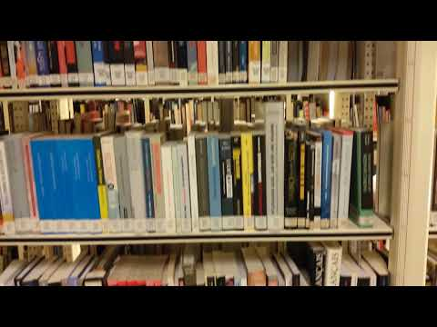 Учеба в Голландии - Библиотека Университета (Groningen University Library, Holland)