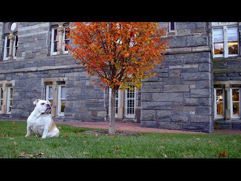 Fall at Georgetown University
