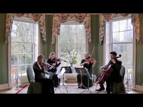 Sweet Child Of Mine (Guns n Roses) Wedding String Quartet