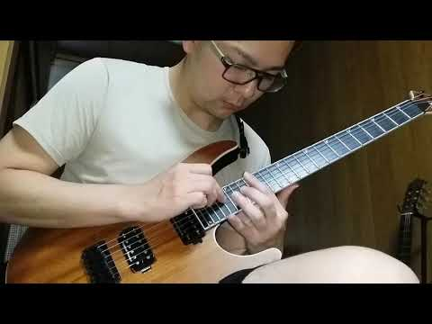 The Zenith Passage - Holographic Principle II: Convergence (guitar cover)