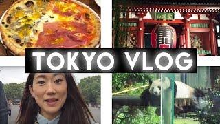 TOKYO VLOG : Ueno Zoo, Roppongi Hills, Salsa club (Paraiso)|東京 旅行Vログ|PlaythislifeAzusa