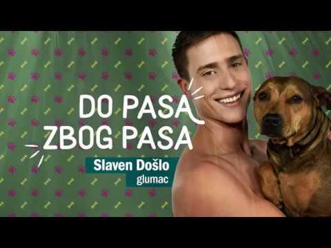 "Slaven Došlo priključio se akciji ""Do pasa zbog pasa"" i ništa slađe nismo skoro videli"