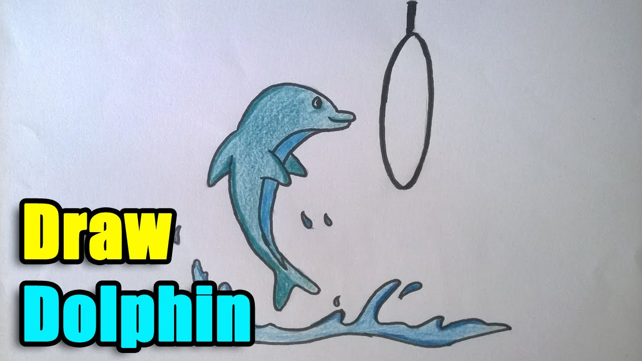 How To Draw A Dolphin For Beginners And Kids Youtube