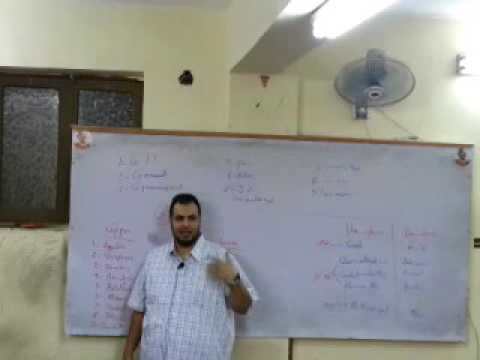 Internal medicine - Clinical -Dr.Mahmoud Allam_Abdomen 1