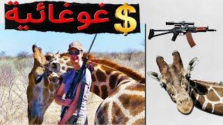 سعر صيد الزرافة! معلومات مثيرة عن أجمل حيوان مهدد بالإنقراض