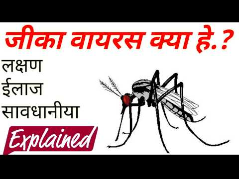 WHAT IS ZIKA VIRUS IN HINDI | Complete Information on Zika Virus