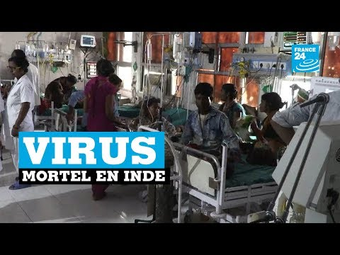Le nord de l'Inde touché par un virus mortel