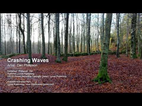 Crashing Waves  Dan Phillipson Lynne Publishing