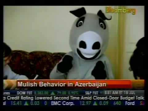 Mulish Behavior In Azerbaijan - Bloomberg