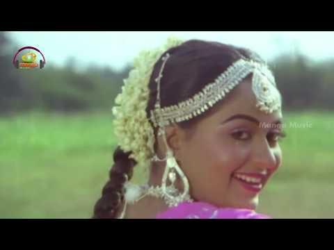 Chirala Chilaka Music Video   Muddayi Telugu Movie Video Songs   Krishna   Radha   Mango Music