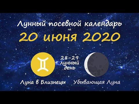 [20 июня 2020] Лунный посевной календарь огородника-садовода