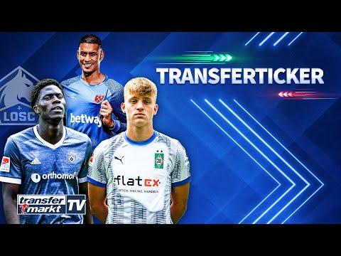 Download Hertha-Talent Netz zu Gladbach / Lille & HSV wegen Onana einig / Areola zu West Ham | TRANSFERMARKT
