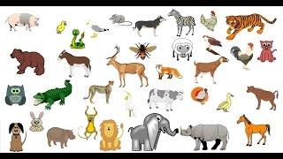 Los sonidos de los animales para niños de 1 a 5 años (ANIMADOS)