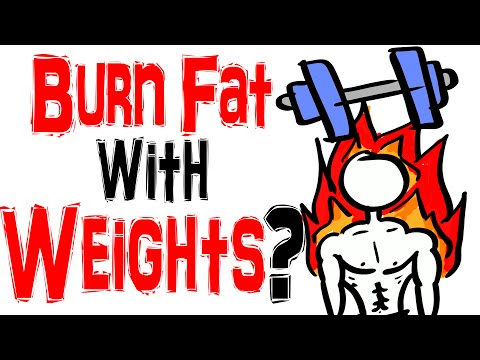 Weight Training VS Low Intensity Cardio  – Best Way to Burn Fat?
