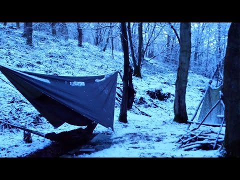 Solo Wild Camp ~ Grey Squirrel Hunt ~ Bushcraft #1