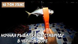 Ночная ловля ставриды на микроджиг Отличная рыбалка на черном море удовольствие от каждой поклёвки