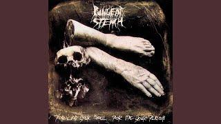 Embalmed in Sulphuric Acid (Remixed & Remastered 1993 Version)