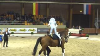 freestyle Roy Rogers CVI Belgium 2015
