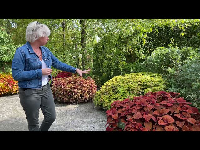 September tour of the 2021 Trial Garden with Tanya Carvalho