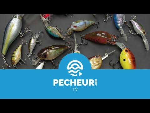 Quels leurres pour débuter la pêche des carnassiers ? Tutoriel Pecheur.com