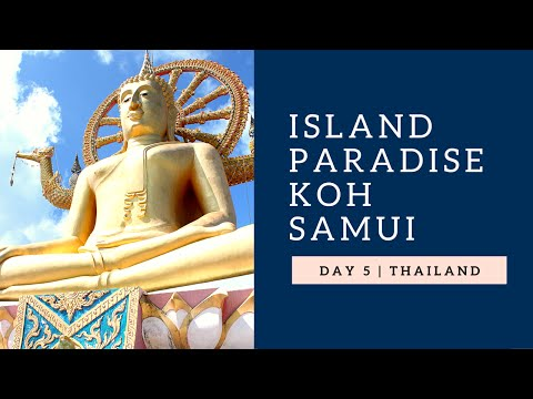 ISLAND PARADISE | Koh Samui Thailand | Affordable Asia Tours