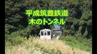 木のトンネル 平成筑豊鉄道