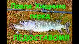 Такой Рыбалки у меня еще не было!!! Как поймать Судака в Ноябре.  Рыбалка перед Ледоставом!