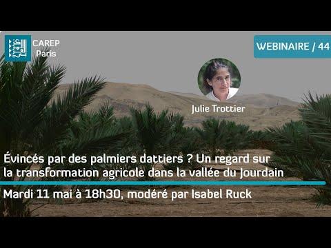 44 / Évincés par des palmiers dattiers ? La transformation agricole dans la vallée du Jourdain