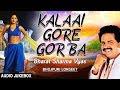 Download KALAAI GORE GOR BA | BHOJPURI LOKGEET AUDIO SONGS JUKEBOX | SINGER - BHARAT SHARMA VYAS | MP3 song and Music Video