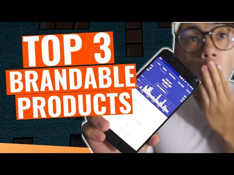SELL These Three Brandable Winning Products For Long Term Shopify Dropshipping  2020 thumbnail