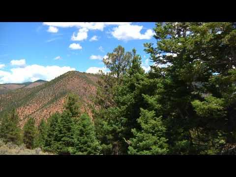 American Naturalist Show 1 Part 1