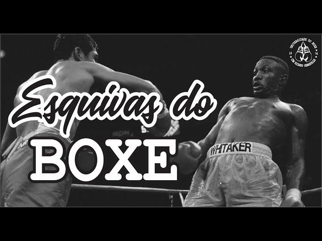 As esquivas básicas do Boxe
