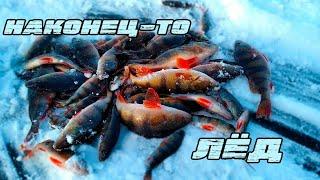 Урра Зимня рыбалка 2020 Последний лед Ловля окуня на блесну Маралистик лучшая блесна на окуня