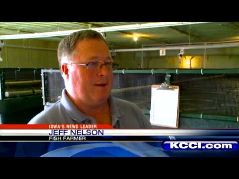 Fish farming in iowa youtube for Iowa out of state fishing license