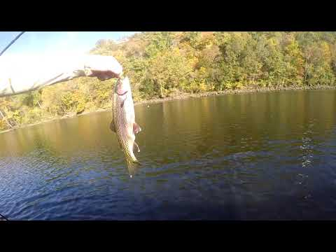 Fly Fishing:  Scud Lesson