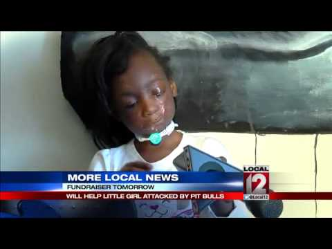 Fundraiser will help little girl attacked by pit bulls