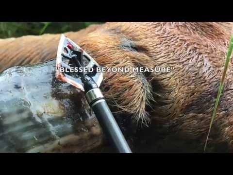 Spartan Port Philippine Banteng (Wild) Bull Bow Hunt