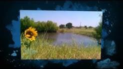 Royse City Texas Unique Country Home, Horse Acreage, Pond