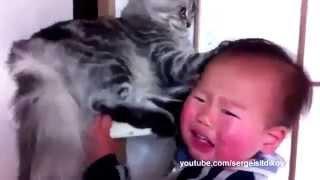 Смешные животные и дети.