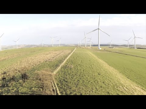 Eneco Wind Telegraph Business Club