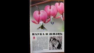 Дайджест журнала Наука и жизнь №8-2019. ОКБ им. профессора Светлицкого В.А.