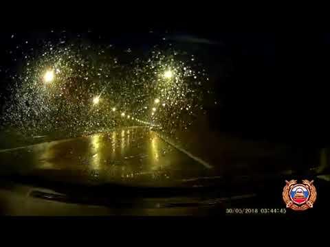 Опубликованы видео и подробности смертельного ДТП с лосём на трассе М-10 под Тверью