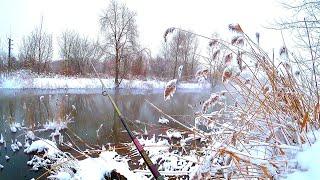 ПРЕД-ВЕСЕННИЙ СПИННИНГ! Рыбалка в камыше! Лёгкий и микроджиг! Трудности зимы 2021 года! Окунь, щука.