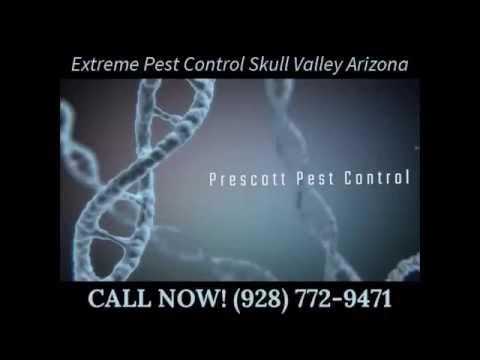 Extreme Pest Control Skull Valley Arizona