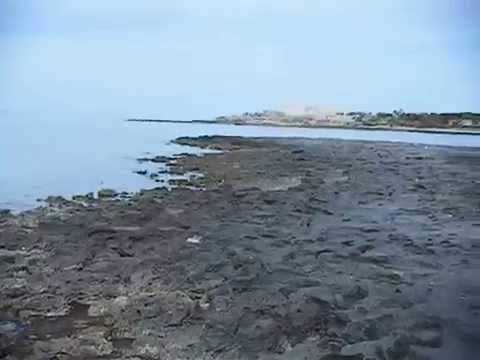 www.guide-tunisie.voyage  La Côte sauvage de Sidi Jmour-Djerba